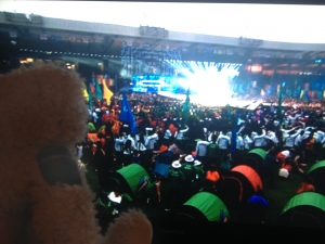 Baxterbear watching light show at closing ceremony of Glasgow 2014