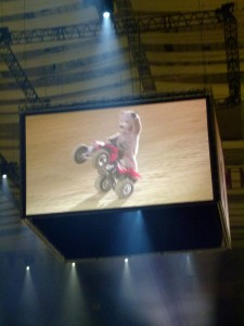 Baxterbear wheelie big screen-001