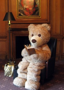 Baxterbear-reading-3