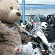Baxterbear Rides Off on Poppy Bike