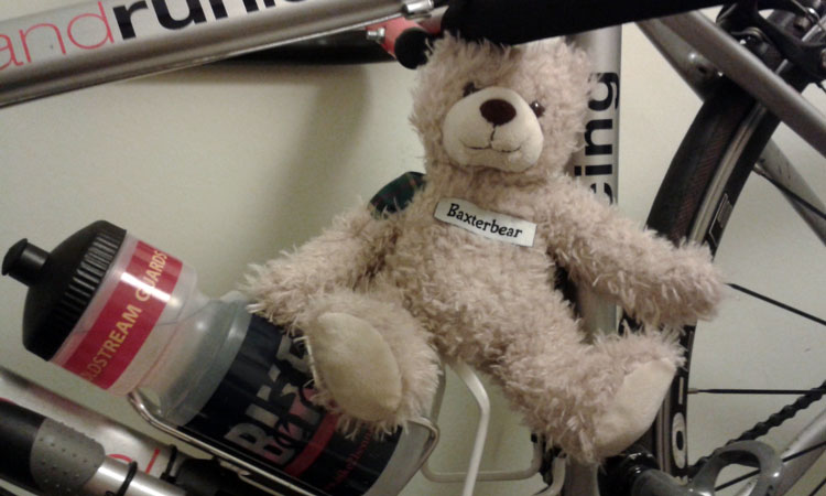 Baxterbear's featured on lots of the bikes.